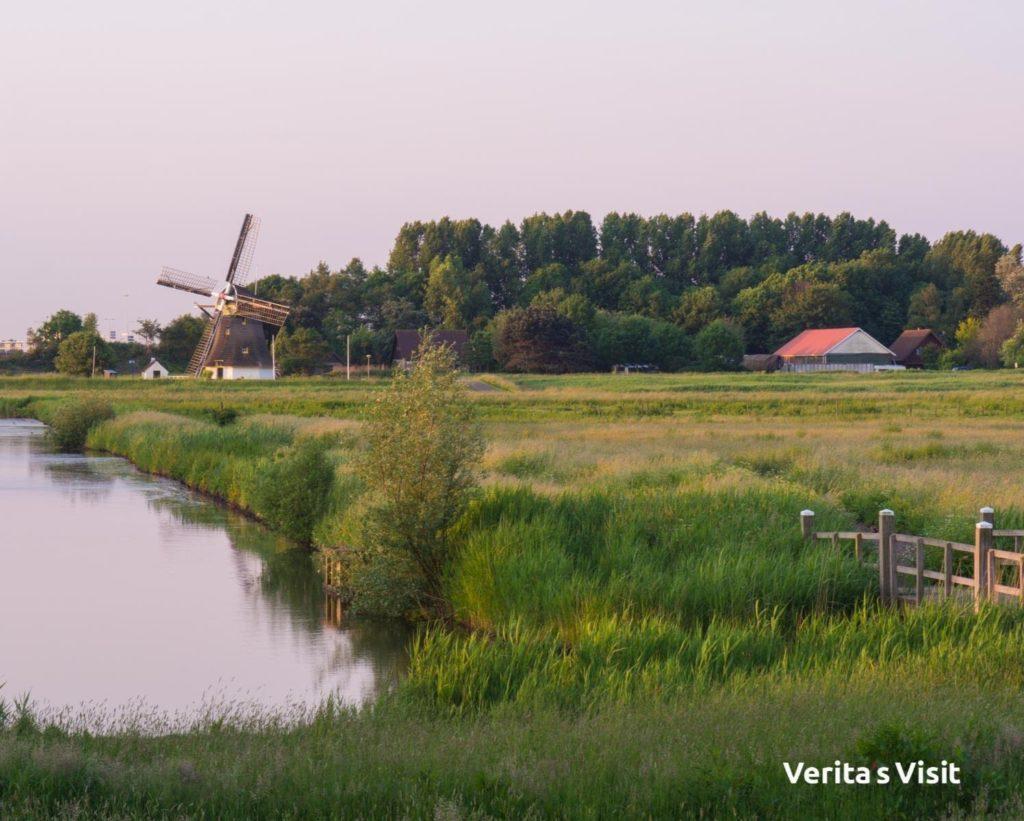 Delft windmill molen fietstocht gids bike tour Verita's Visit