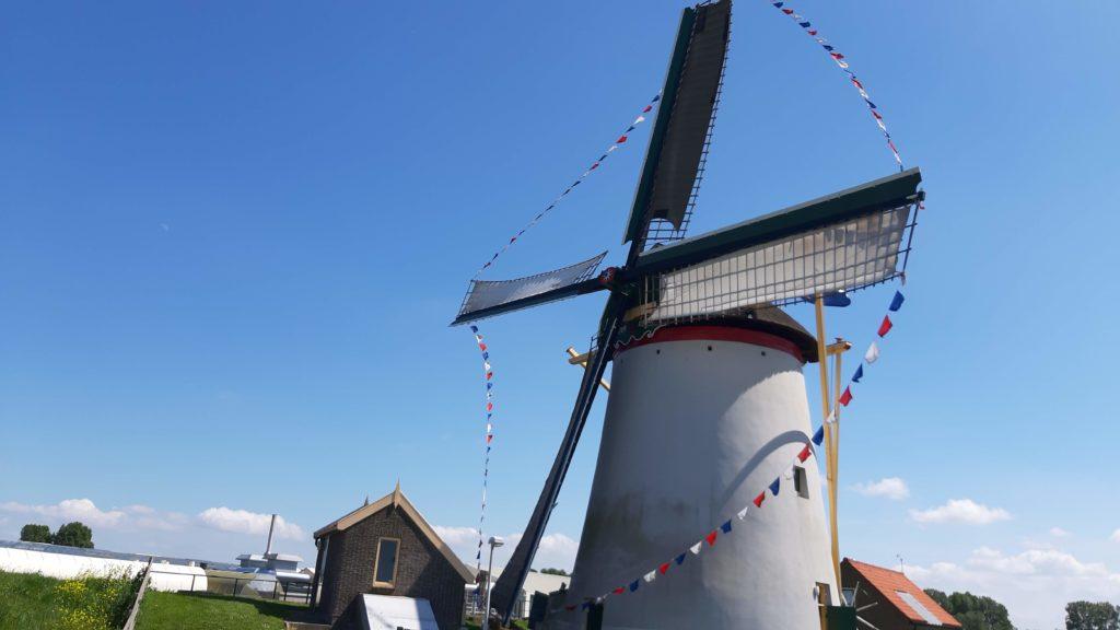 windnill The Hague Delft tour groep reis uitje event  Verita's Visit Den Haag Delft