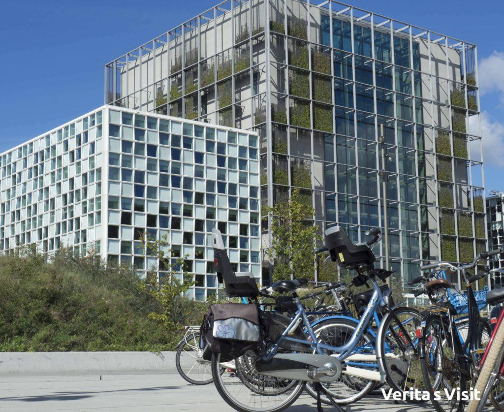 The Hague ICC bike tour Peace & Justice fietstocht vrede & recht Den Haag