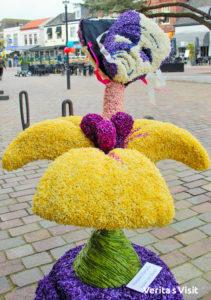 tulip & flower activitities Keukenhof tulp & voorjaars activiteiten Bollenstreek Verita's Visit