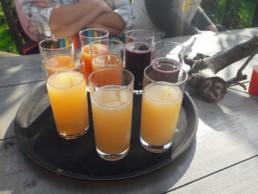 local food & drink stop group tour Verita's Visit Leiden gastronomy