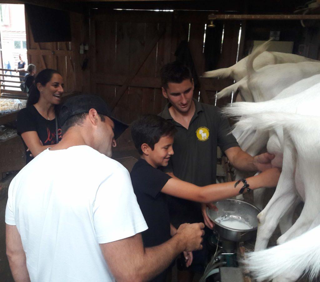 Family farm tour Verita's Visit familie rondleiding kaasmaken boerderij