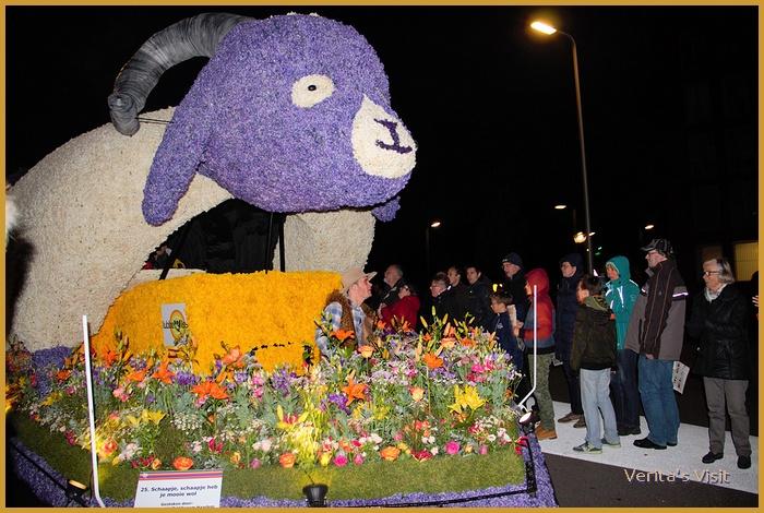 Flower parade special behind scenes 4 hour tour achter de schermen Bloemencorso mid dagje uit Verita's Visit