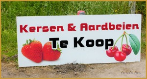 Strawberries and cherries in Holland-veritasvisit