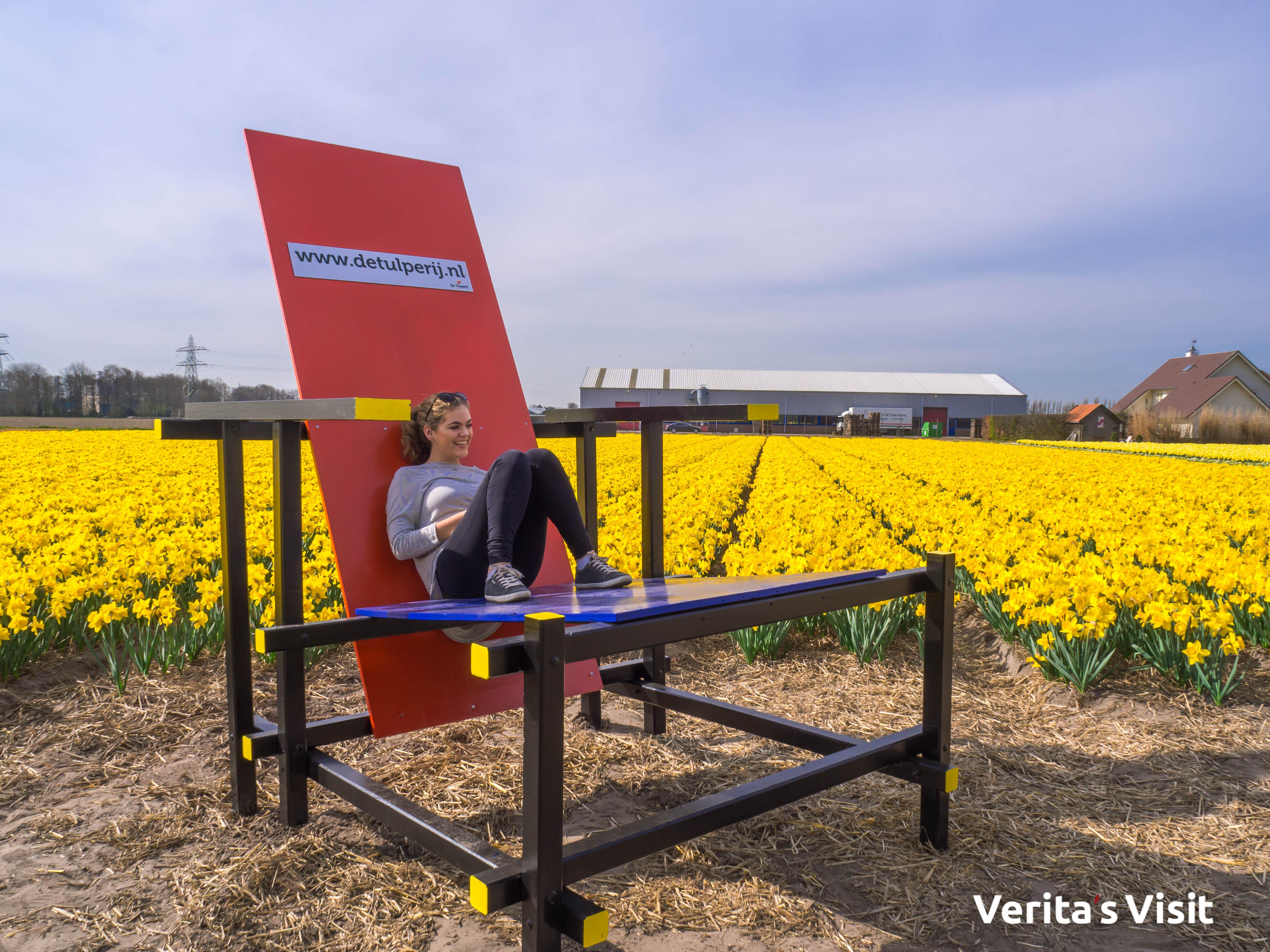 stop Leiden - Keukenhof fietstocht met gids Verita's Visit