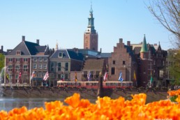 Activities in The Hague historical city to beach
