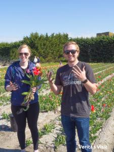 tulpen plukken fietstocht stop tulip picking tour Verita's Visit