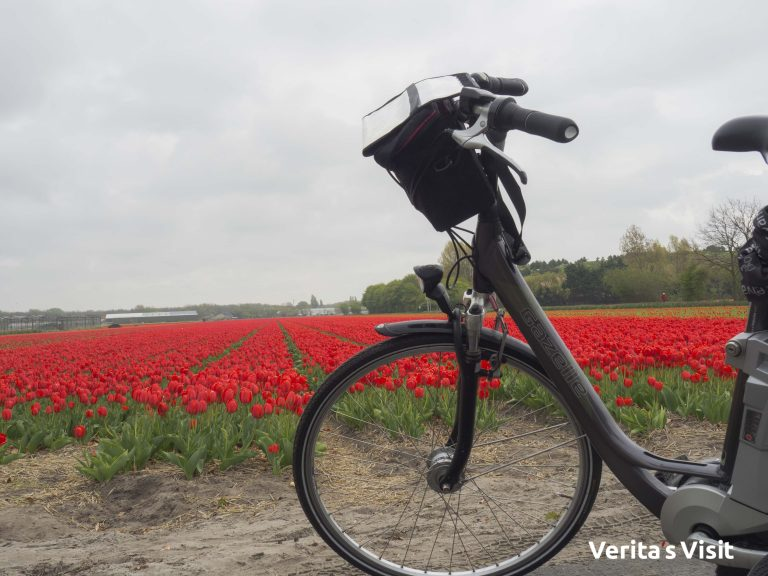 Leiden - Keukenhof fietstocht e-bike Verita's Visit Holland